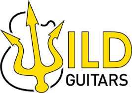 חנות גיטרות מומלצת